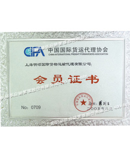 CIFA会员证书